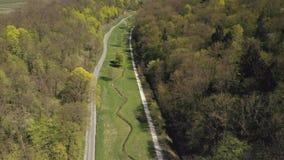 Воздушный парк Штутгарт города съемки, красивые деревья, луг с цветками видеоматериал