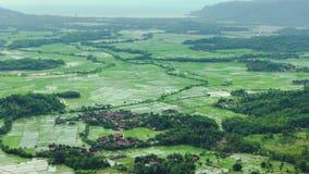 Воздушный пейзаж ландшафта панорамы наклона горы с тропическим полем леса и риса в долине от амфитеатра Panenjoan акции видеоматериалы