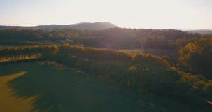Воздушный полет, малая высота, над холмами и полями поло на заходе солнца акции видеоматериалы