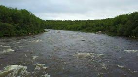 Воздушный полет под быструю воду Salmon River Pechenga на полуострове Kola акции видеоматериалы