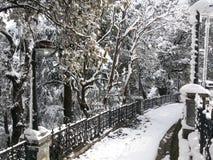 Воздуходувки снега Стоковые Изображения