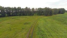 Воздушная дорога деревни отснятого видеоматериала сток-видео