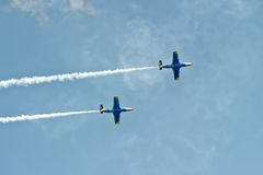 2 воздушного судна дельфина L-29 в мухе Стоковая Фотография RF