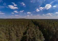 Воздушное фото ландшафта леса вызвало Tennenloher Forst около деревни Tennenlohe Стоковое Фото