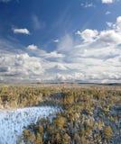 Воздушное taiga Стоковые Фотографии RF