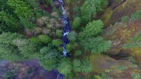 Воздушные падения Орегон Multnomah съемки сток-видео