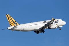 Воздушные судн аэробуса A320 Tiger Airways Tigerair Стоковые Изображения RF