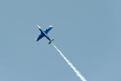 Воздушные судн дельфина L-29 в мухе Стоковые Изображения