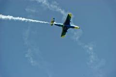 Воздушные судн дельфина L-29 в мухе Стоковые Фотографии RF