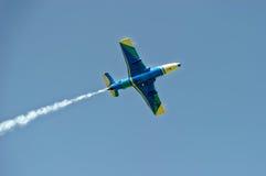 Воздушные судн дельфина L-29 в мухе Стоковые Изображения RF