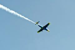 Воздушные судн дельфина L-29 в мухе Стоковые Фото