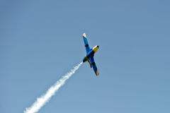 Воздушные судн дельфина L-29 в мухе Стоковое Изображение RF