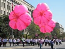 Воздушные шары вишневого цвета на параде Стоковые Изображения