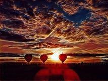 Воздушные шары в желтом поле во время захода солнца Красочные воздушные шары на предпосылке неба захода солнца Стоковая Фотография RF