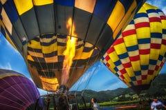 Воздушные шары над Napa Valley Калифорнией Стоковая Фотография RF