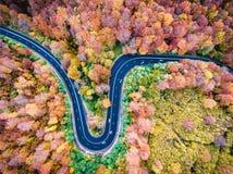 Воздушный взгляд трутня изогнутой извилистой дороги через лес высокий Стоковая Фотография