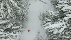 Воздушный лес зимы съемки с женщиной в красном цвете сток-видео
