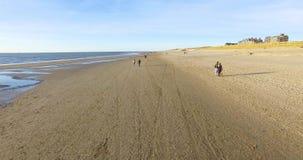 Воздушный отснятый видеоматериал береговой линии с людьми и seashore Летание трутня вдоль пляжа песка видеоматериал
