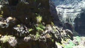 Воздушный отснятый видеоматериал сценарного вулканического ландшафта в каньоне и скалах Masca, в Тенерифе, Канарские острова, Исп сток-видео