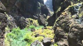 Воздушный отснятый видеоматериал сценарного вулканического ландшафта в каньоне и скалах Masca, в Тенерифе, Канарские острова, Исп видеоматериал