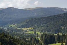 Воздушный пейзаж черного леса Стоковое фото RF