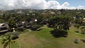 Воздушный трутень сочных зеленых деревьев на курорте сток-видео