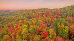 Воздушный цвет падения Стоковая Фотография RF