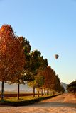Воздушный шар голубого неба стоковые фотографии rf