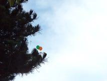 Воздушный шар летания Стоковая Фотография RF