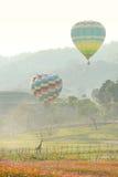 Воздушный шар или горячий воздух Стоковая Фотография