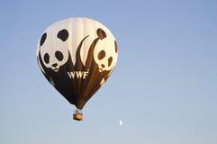 Воздушный шар WWF стоковая фотография rf