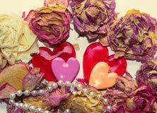 2 возлюбленн и сухих цветки над белым bacground Стоковое Изображение