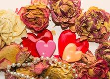 2 возлюбленн и сухих цветки над белым bacground Стоковые Изображения