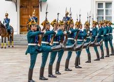 Воины полка Кремля Стоковые Изображения
