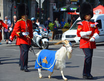 воин парада Стоковая Фотография