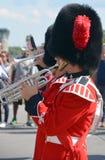 воин парада Стоковая Фотография RF