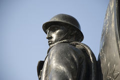 воин утюга Стоковое Фото