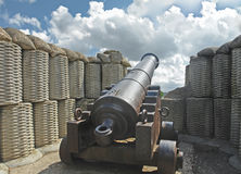 война 1854 пушек Стоковые Фото