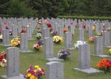 война seoul кладбища корейское мемориальное Стоковая Фотография