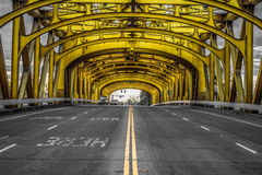 двойной желтый цвет Стоковая Фотография