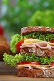 двойной сандвич стоковые изображения
