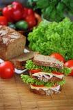 двойной сандвич стоковое изображение rf