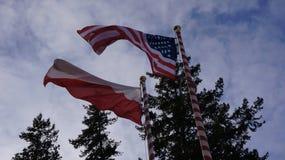 войска США в Польше Стоковое Фото