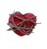вокруг колючего провода сердца Стоковые Фото