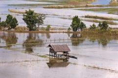 вокруг полей затопленных муссон озера inle Стоковые Изображения RF