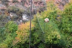 Волейбол летает над сетью Стоковая Фотография