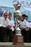волейбол трофея slovak стоковые изображения