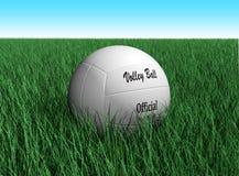 волейбол шарика Стоковое Фото