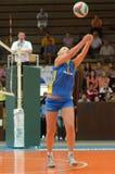 волейбол tatabanya игры kaposvar Стоковые Изображения RF