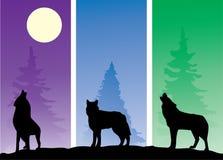 волки бесплатная иллюстрация